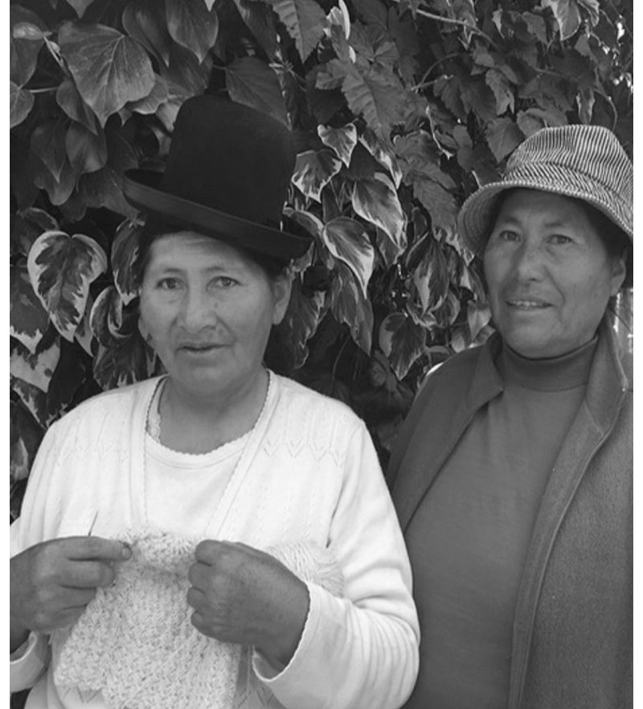 Kvinder der strikker Irmelin