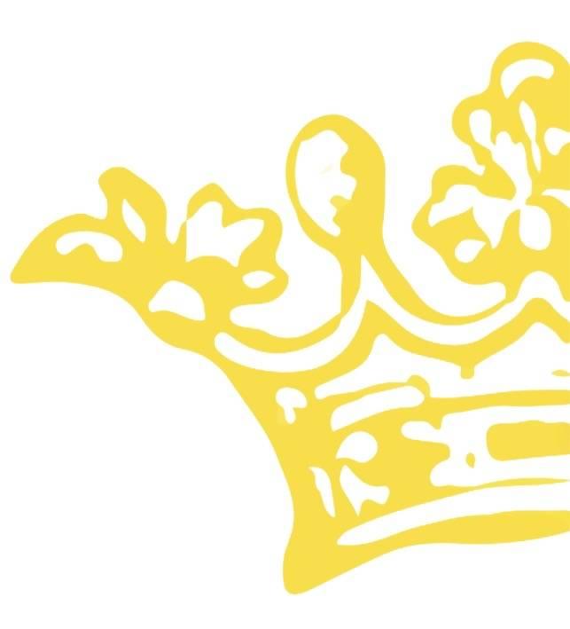 Aperitif sjaler blomster gul